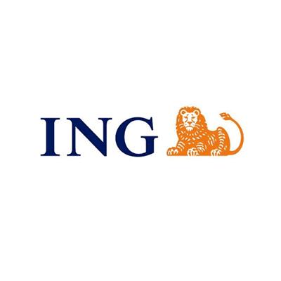 ing_seguros.png